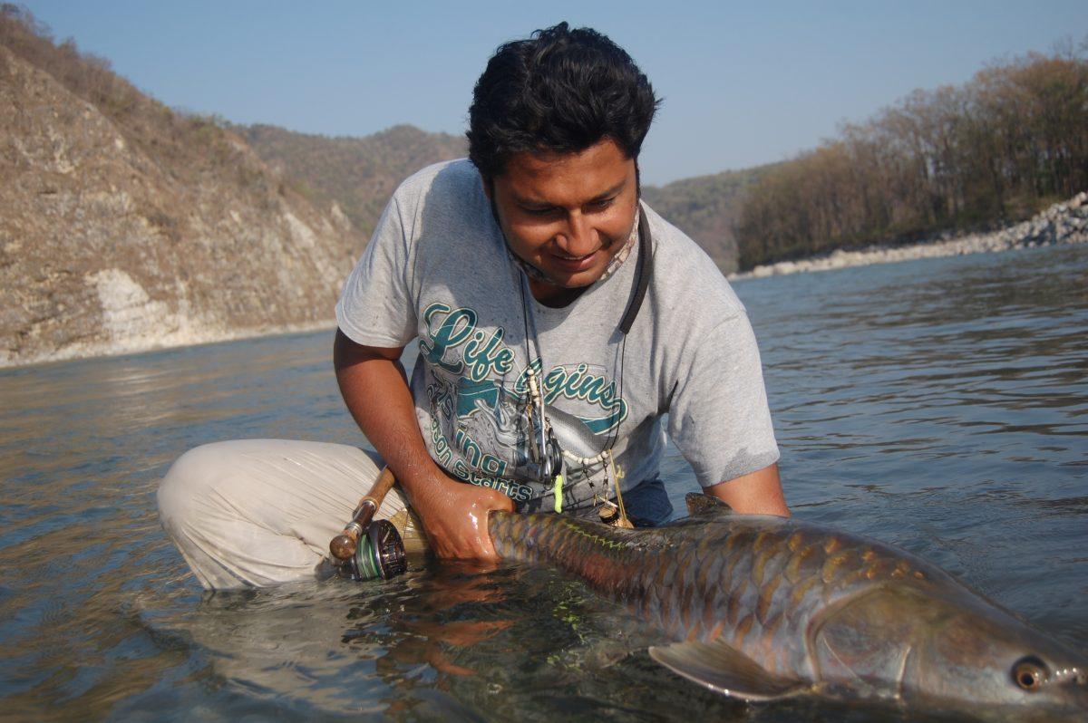 Golden Mahseer fly fishing expert