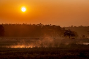 Starting Safari Sunrise Kanha