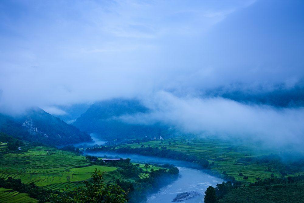 Bhutan Golden Mahseer River