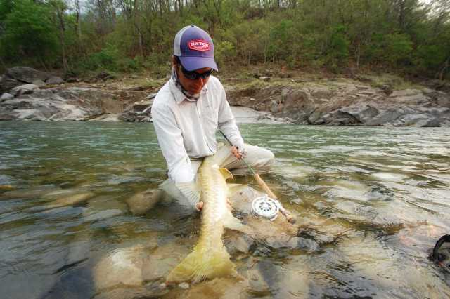 Misty fly fishing for Mahseer