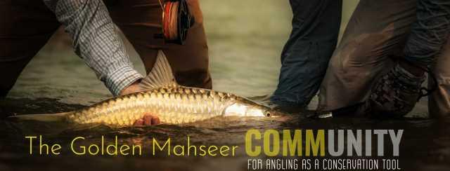 Golden Mahseer Community