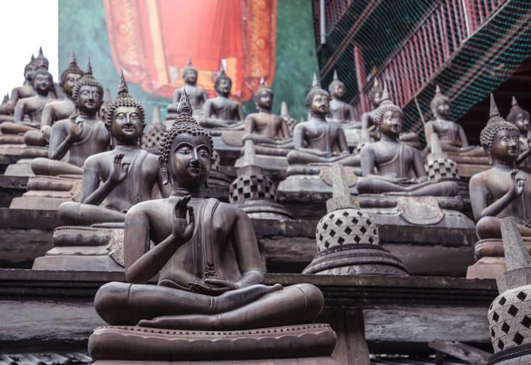26 citations de Bouddha - Photo by Milada Vigerova on Unsplash