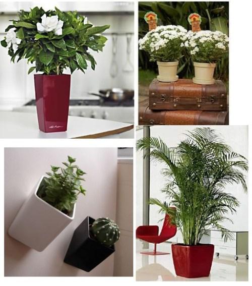 Decoração de interiores com vasos ornamentais