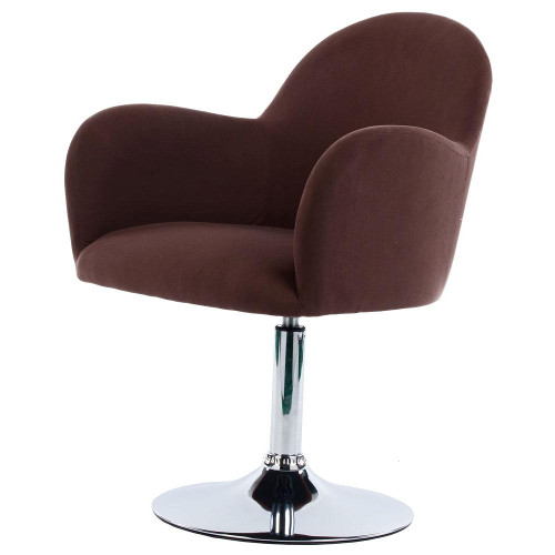 Cadeiras giratórias para sala de estar (5) dicas de decoração fotos