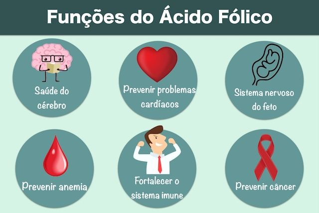 Quais as funcoes do acido folico
