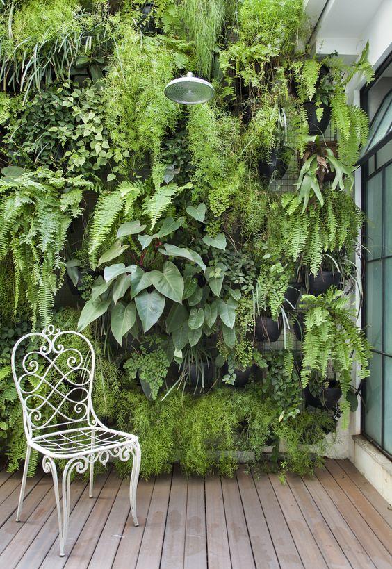 Ideias para montar jardins pequenos parede verde
