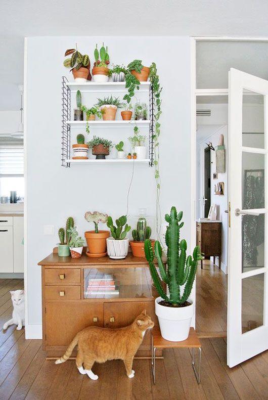 objetos de decoracao para a sala
