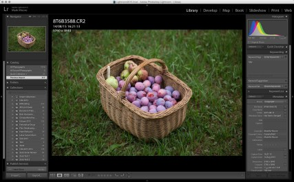 Canon 5D image imported to Lightroom, with no processing.
