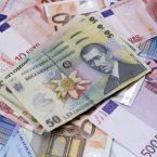 Majorare de capital cu 20 milioane de lei pentru Euroins România