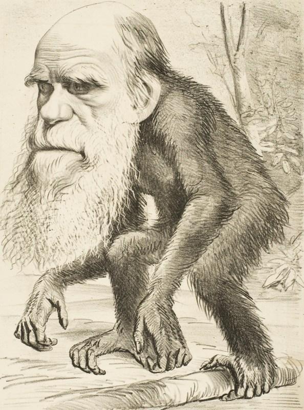 Astfel era înfăţişat adeseori în prea vremii Charles Darwin,   de către opozanţii săi,   cei care nu puteau accepta teoriile sale. Era denigrat prin articole şi caricaturi care îl prezentau în chip de maimuţă sau ca un monstru.
