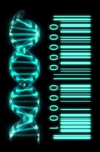 https://i0.wp.com/transinformation.net/wp-content/uploads/2016/01/Biophotonics-the-Science-behind-Energy-Healing-DNA-as-Genetic-Barcode.jpg