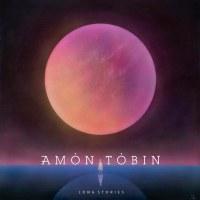 """AMON TOBIN """"LONG STORIES"""""""