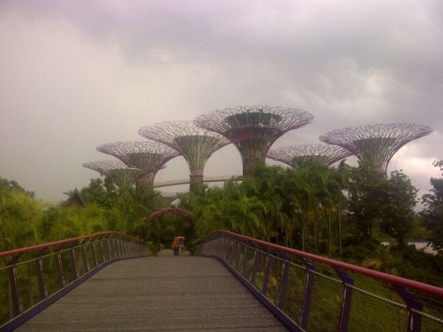 The Supertrees welcome you to Gardens by the Bay