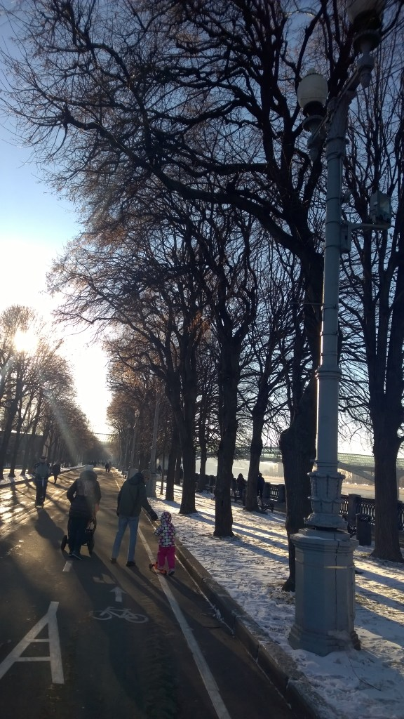 Thursday Tree Love: Barren trees in Gorky Park
