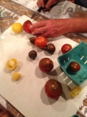 Heirloom tomatoes being prepared for seed saving.
