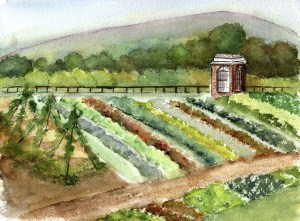Watercolor painting of Thomas Jefferson's Monticello by artist Lin Frye. Photo: Lin Frye, http://www.redbubble.com/people/linfrye .