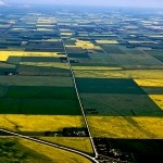How farmland became Canada's hottest real estate market