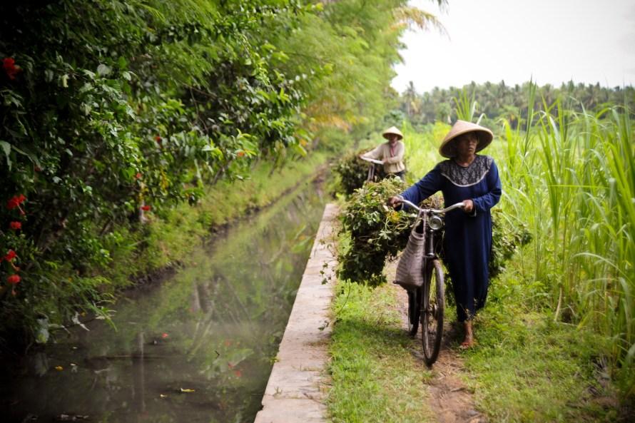 Yogyakarta Irrigation Project