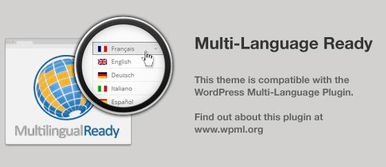 Visia_multilingual_plugin