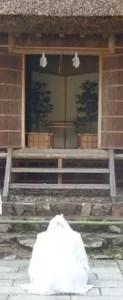 熊野大社の鑽火殿に額づく筆者