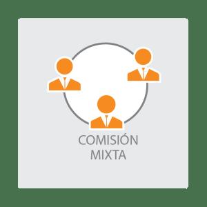 Botón comisión mixta-02