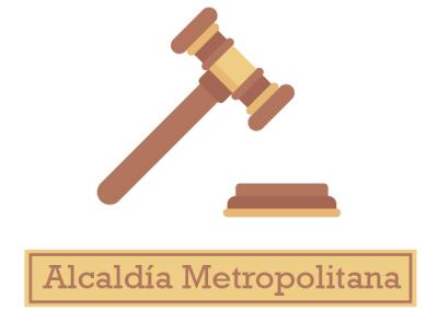 Ordenanza de Transparencia y Acceso a la Información Pública: Alcaldía Metropolitana