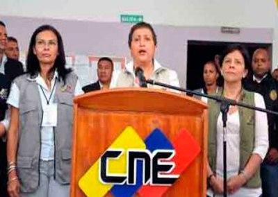 Exigen al CNE ordenar el retiro de publicidad electoral de los organismos públicos