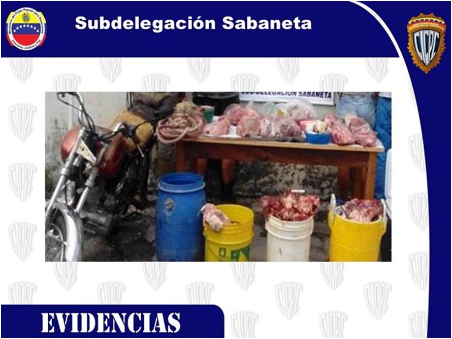 Se incrementan los casos de robo de ganado en Barinas