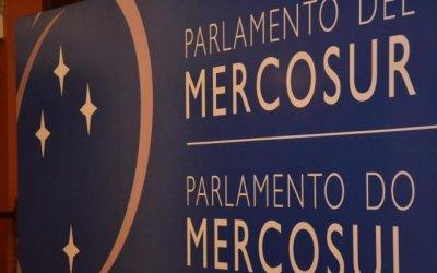 Diputados elevan denuncias por irregularidades en la entrega de pasaportes al Parlasur