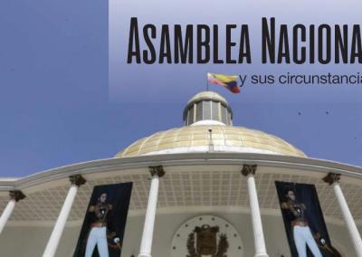 Asamblea Nacional y sus circunstancias 2017