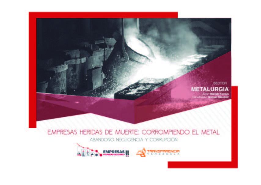 EPE II - Resumen ejecutivo, Transparencia Venezuela_Página_35