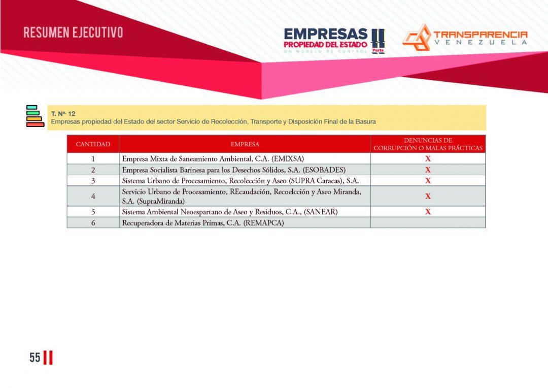 EPE II - Resumen ejecutivo, Transparencia Venezuela_Página_55