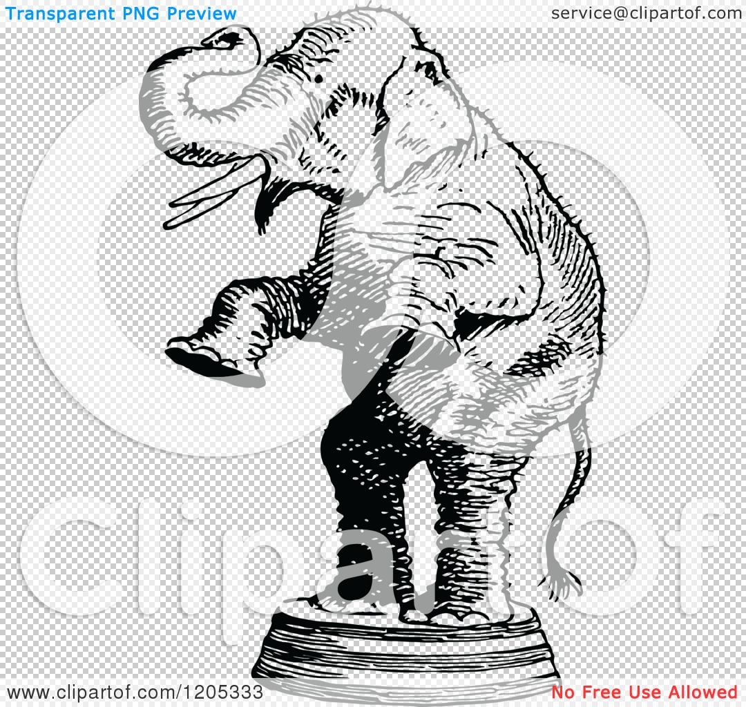 Cut Out Elephant Circus Worksheet