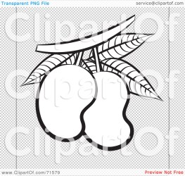 outline clipart mangoes illustration rf royalty clip perera lal file