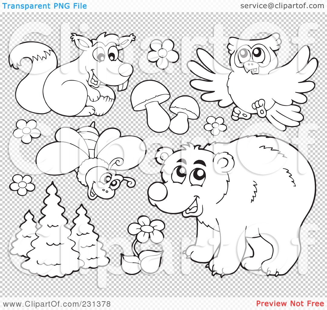 Rainforest Clipart