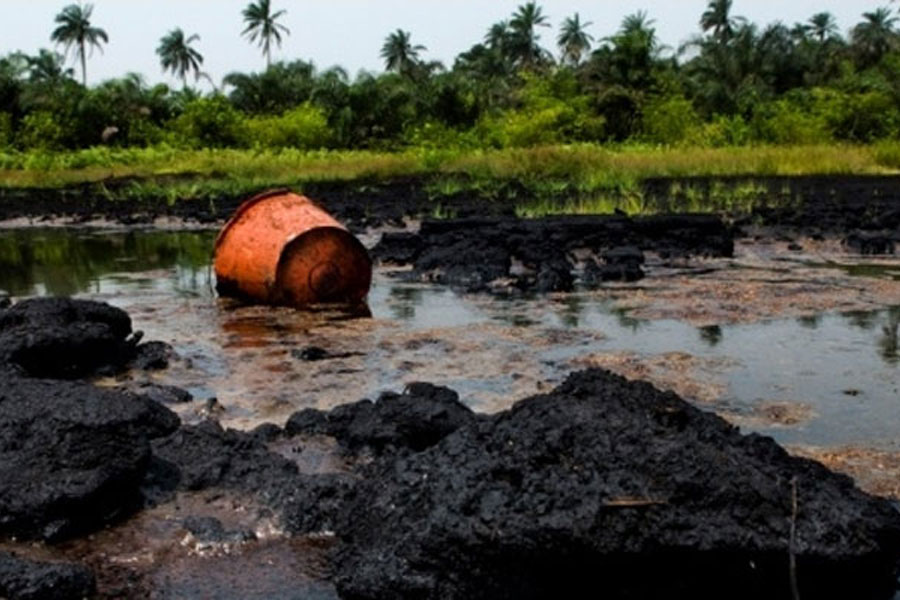Senate charge HYPREP on faster work pace on Ogoni cleanup