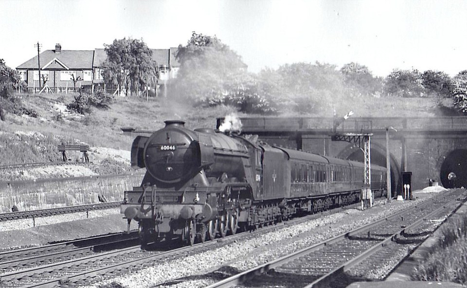 60046 DIAMOND JUBILEE - Gresley LNER Class A3 4-6-2 - built 08/24 by Doncaster Works as LNER No.2545 - 07/46 to LNER No.46, 08/49 to BR No.60046 - 06/63 withdrawn from 34F Grantham - seen here at Wood Green, 06/62.