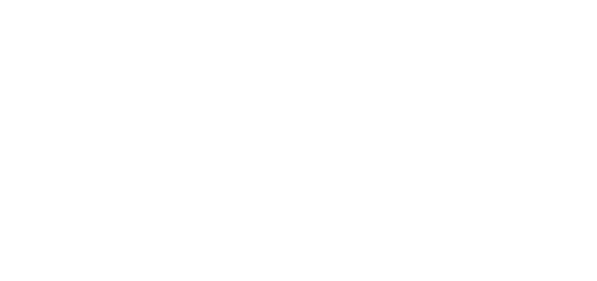 Sydney Wedding Photographer and Wedding Video logo