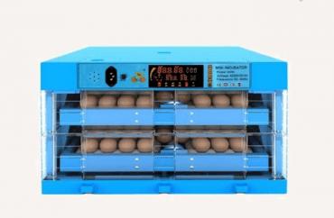 180 eggs capacity Incubators