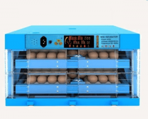 60 eggs capacity Sized Incubators