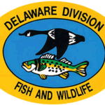 Delaware Adopts Coyote Trapping Season