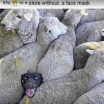 Me in a store without a mask