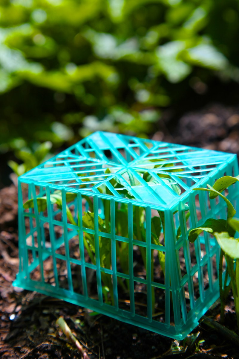 Plastic Mesh Produce Baskets  Trash Backwards Blog