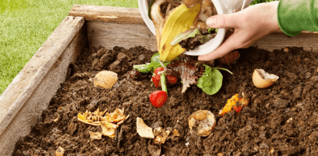 Organic Waste with Compost