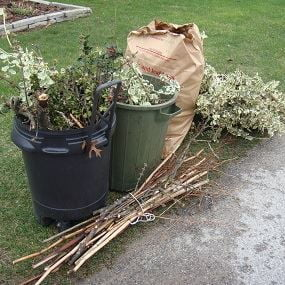 Dispose of Yard Waste