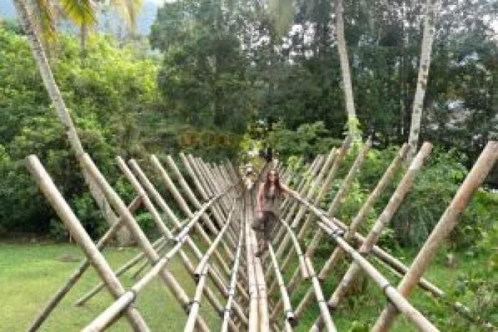 Puente típico malayo