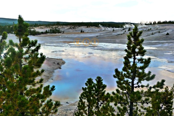Yellowstone Porcelain Basin
