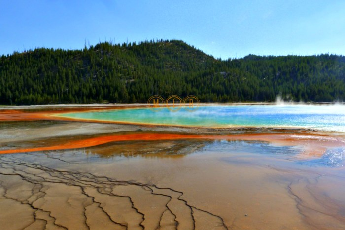 Yellowstone Prismatic Pool