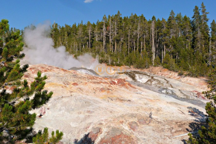 Yellowstone Steamboat Geyser