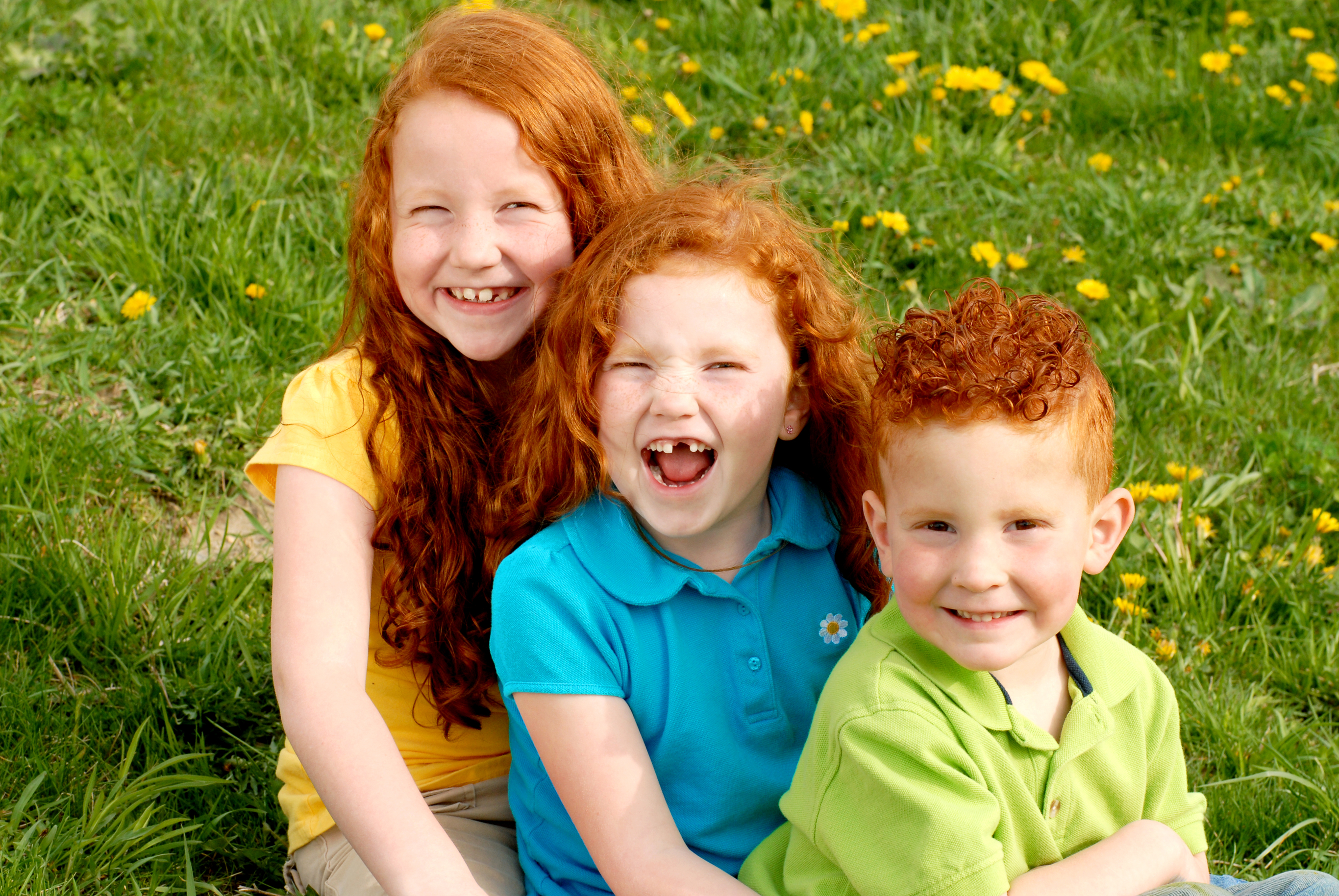 the role of siblings